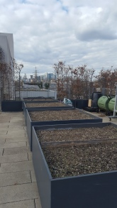 More flowerbeds waiting to be planted